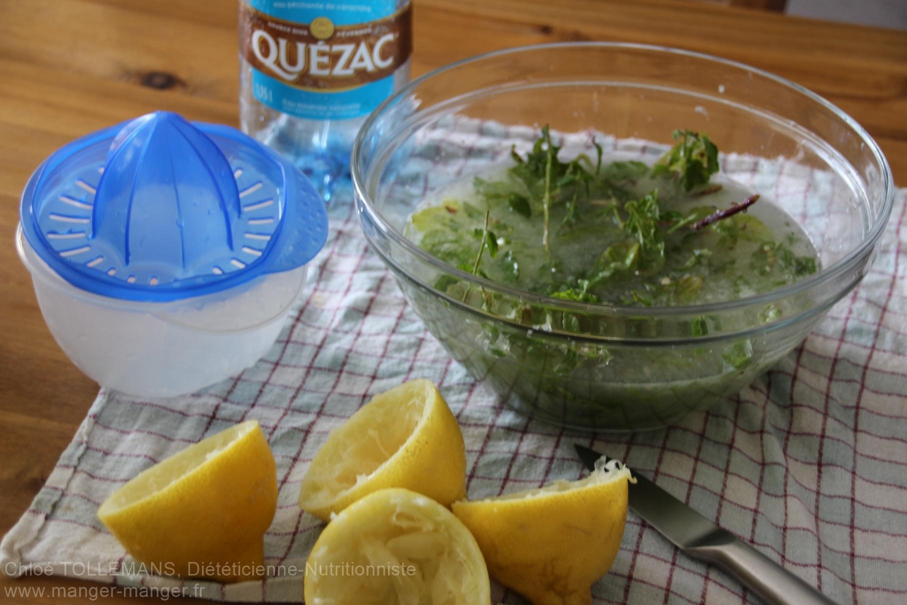 Dieteticienne Toulouse - Boisson menthe citron